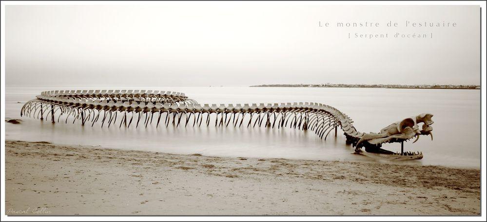 Serpent Ocean T3081