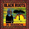 Black-Roots---In-session--2007-.jpg