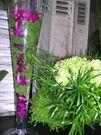fleur et vase