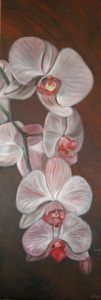 ORCHIDEES (huile 40 x 120 cm)