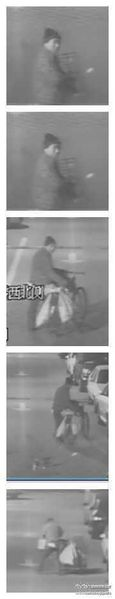 voleurs de chats Pékin 21