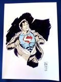 Superman-by-JH Wzgarda