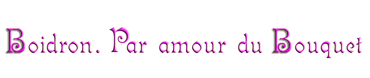 BoidronParamourdubouquetVioletRelief