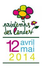 printemps-landes-routes.jpg