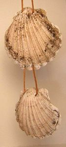 compostelle-coquilles-musee-viborg.jpg