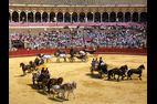 feria-Seville-2012