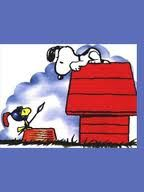 niches-fiscales-snoopy.jpg