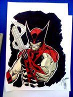 Wolverine-JH Wzgarda