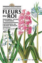 fleurs-roi-versailles-myber.jpg