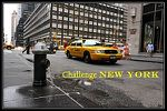 Challenge-new-york-en-litterature---well-read-kid