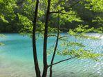 Plitvice-sous-le-soleil 8657