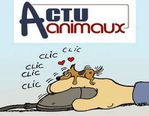408x318actu-animaux