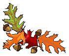 feuilles-de-chene.jpg