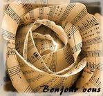 rose_musique.jpg