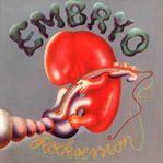 Embryo_rock_session1.jpg
