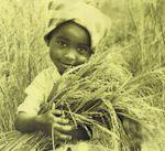 Projet de développement rural pour l'autosuffisance alimentaire.