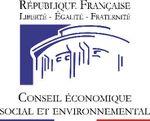 CESE « LA CONJONCTURE ÉCONOMIQUE SOCIALE ET ENVIRONNEMENTALEEN 2010 »