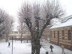 Il neige ...