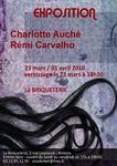 EXPOSITION - Charlotte Auché / Rémi Carvalho à la Briqueterie