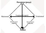 Du schéma L au schéma P ? (2ème partie)