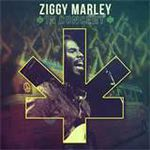 Ziggy Marley – In Concert