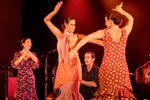 Hagondange Alegria : Stage de Palmas le samedi 10 mars