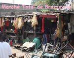 Congo Brazzaville : TOUT VA BIEN MERCI !