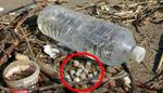 La Seine malade de ses plastiques