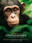Chimpanzés de Mark Linfield et Alastair Fothergill