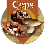 badge ceps200