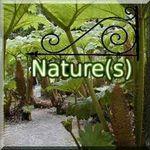 Nature-Enseigne-250px.jpg