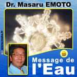 Masaru Emoto : Messages de l'eau (Docu + PDF) [VF]
