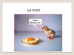 Série : des mots illustrés en images.