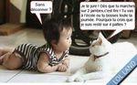 Petit dialogue