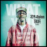 DJSpinn-2012-TeklifeVol.2-WhatYouNeed-.jpg