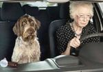 A quel âge doit-on arrêter de conduire ?