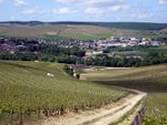 "Mercredi 2 Septembre 2009 : ""Chablis, un grand terroir"""