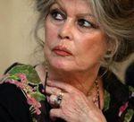 Brigitte Bardot dénonce la filière viande dans une lettre ouverte au ministre de l'Agriculture