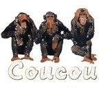 singes coucou