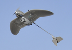 Marines Buy Tiny Wasp UAVs