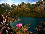 ARGENTINA/CHILE: Parc National Los Alerces & Carretera Austral Norte