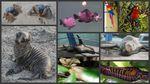 Du 17 octobre 2009 au 17 juin 2011 - Notre tour du monde, c'est fini!
