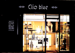 Clio Blue SAINT GERMAIN EN LAYE 78100