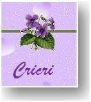 Cricri violettes