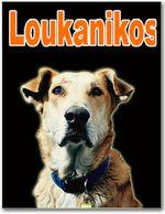 loukanikos_1-copie.jpg