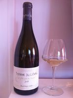 Dominique Lucas - Terroir du Leman - Les vignes de-copie-1