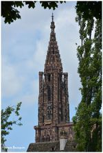 Strasbourg Cathedrale 05