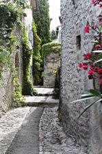 Provence 2164