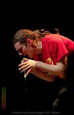 2013 Festival Reggae Beynes - Cameleon © Olivier -copie-6