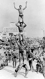 muscle-beach-origines.jpg